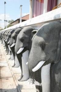 Anuradhapura Sri Lanka (122)