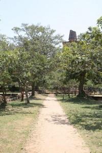 Anuradhapura Sri Lanka (175)