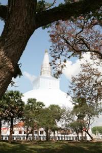 Anuradhapura Sri Lanka (56)