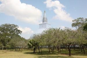Anuradhapura Sri Lanka (57)