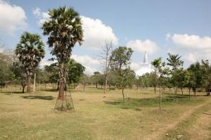 Anuradhapura Sri Lanka (58)