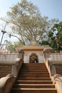 Anuradhapura Sri Lanka (60)