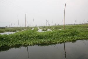 Birma - Inle Lake (119)