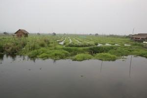 Birma - Inle Lake (143)