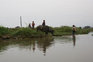 Birma - Inle Lake (303)