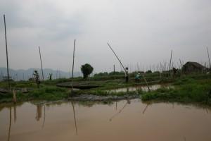 Birma - Inle Lake (391)