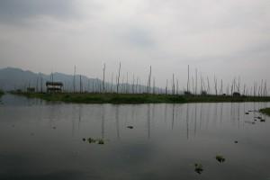 Birma - Inle Lake (411)