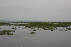 Birma - Inle Lake (79)