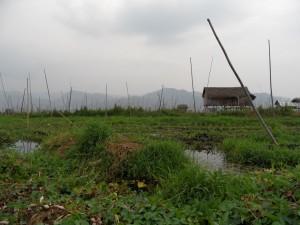 Birma - Inle Lake - Heho (239)