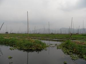 Birma - Inle Lake - Heho (240)