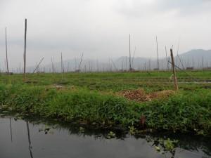 Birma - Inle Lake - Heho (241)