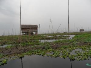 Birma - Inle Lake - Heho (245)
