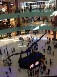 Dubai Mall (67)