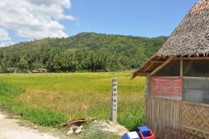 Filipiny (241)
