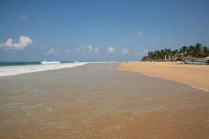 Hikkaduwa - Sri Lanka (100)