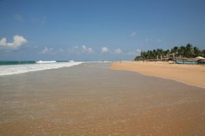 Hikkaduwa - Sri Lanka (101)