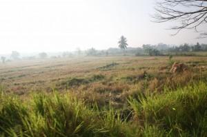 Hikkaduwa - Sri Lanka (2)