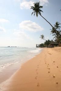 Hikkaduwa - Sri Lanka (23)