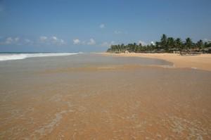Hikkaduwa - Sri Lanka (98)