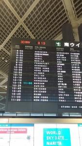 Japonia (112)