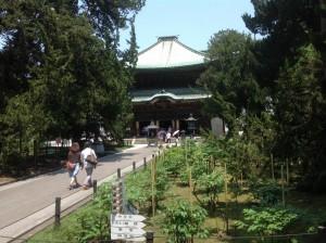 japonia-184