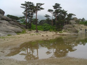 Korea Północna (17)