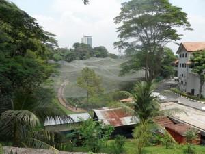 Kuala Lumpur (203)
