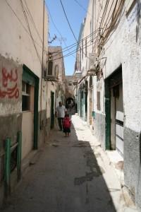 Libia (133)