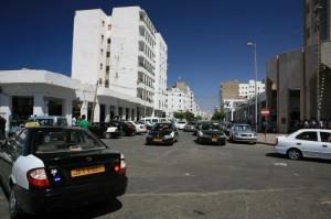 Libia (238)