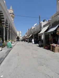 Libia (345)