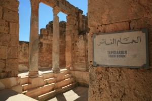 Libia (446)