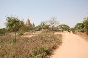 Pagan - Bagan - Birma (147)