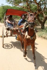 Pagan - Bagan - Birma (151)