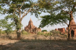 Pagan - Bagan - Birma (2)
