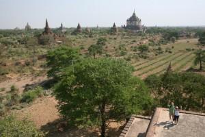 Pagan - Bagan - Birma (97)
