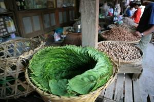 Pagan Birma (47)