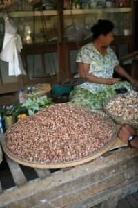Pagan Birma (48)