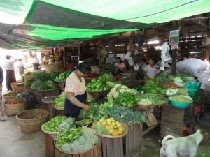 Pagan Birma (72)
