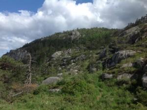 Preikestolen Norwegia (44)