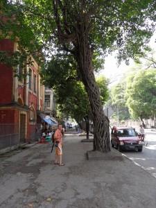 Rangun - Yangon (10)