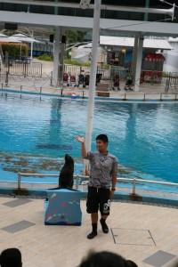 Sentosa Singapur (222)