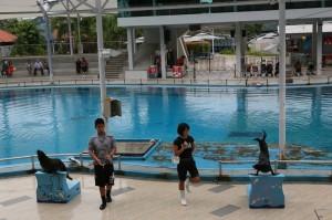 Sentosa Singapur (223)