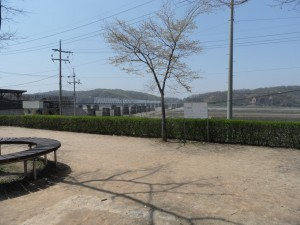 South Korea DMZ (173)
