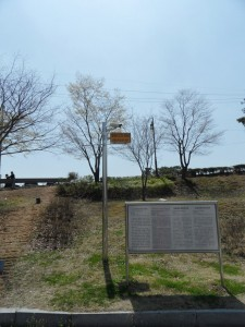 South Korea DMZ (183)