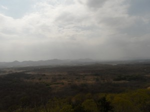 South Korea DMZ (217)