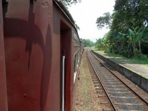 Sri Lanka (29)