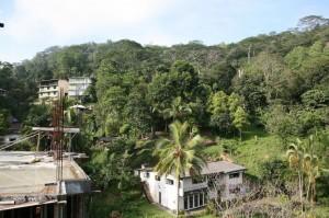 Sri Lanka (8)