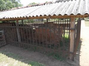 Sri Lanka Anuradhapura (114)