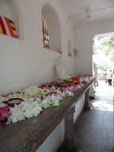 Sri Lanka Anuradhapura (51)