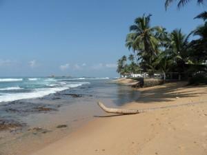 Sri Lanka - Hikkaduwa (16)